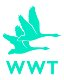wwt_logo_CMYK80x80