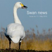 Swan News no 11 - front cover