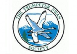 Trumpeter Swan Society